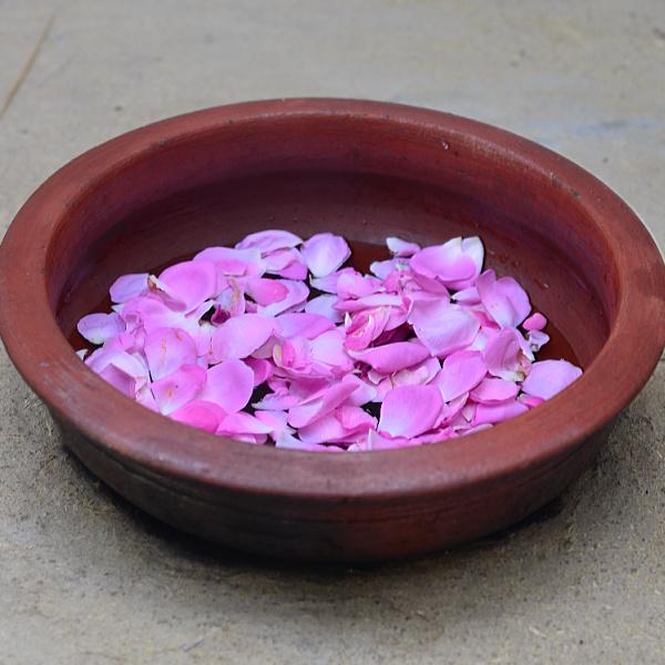 rose water making