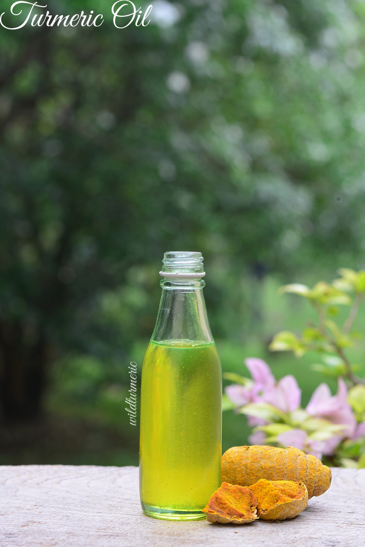 turmeric nutrition
