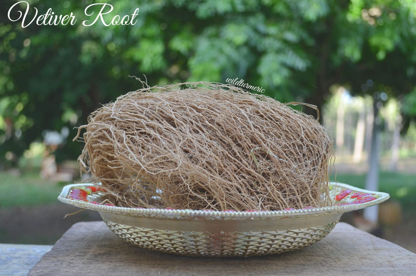 Vetiver Health Benefits