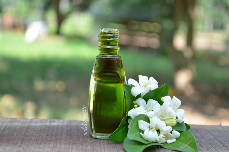 karisalankanni oil for hair growth