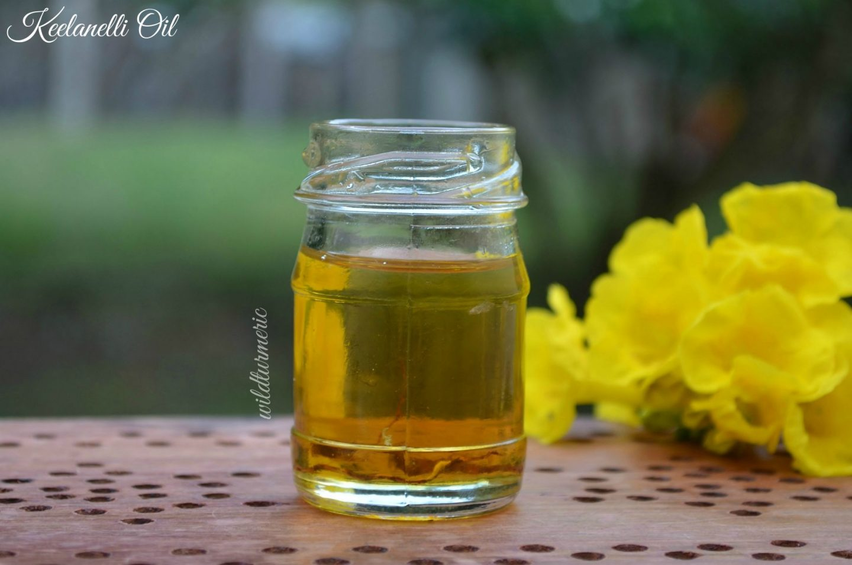 bhumyamalaki plant benefits