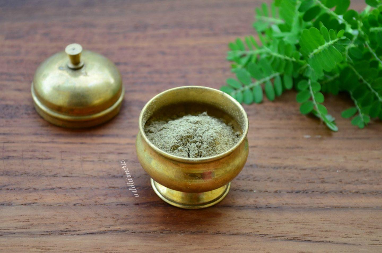 phyllanthus niruri side effects