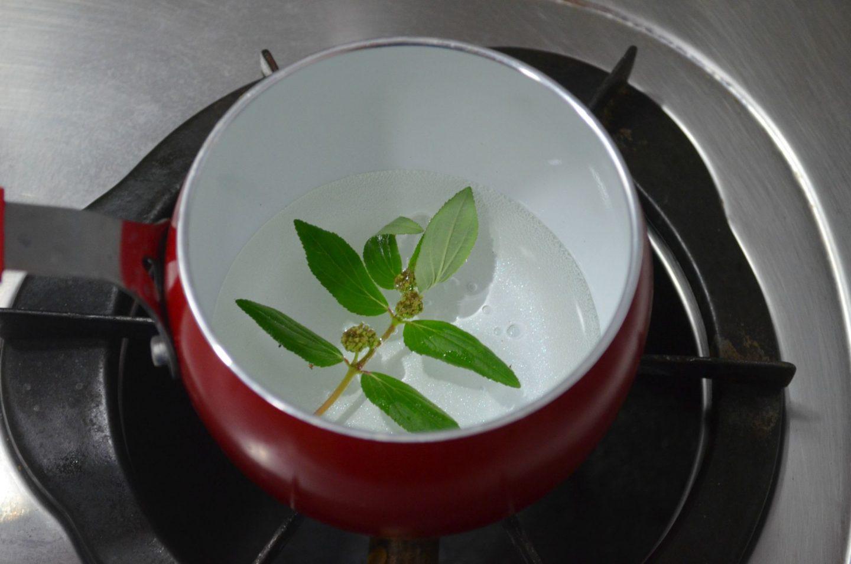 amman pacharisi powder uses