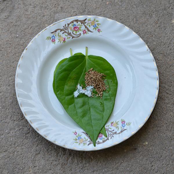 betel nut leaf uses