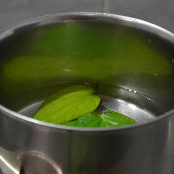 betel leaves health benefits