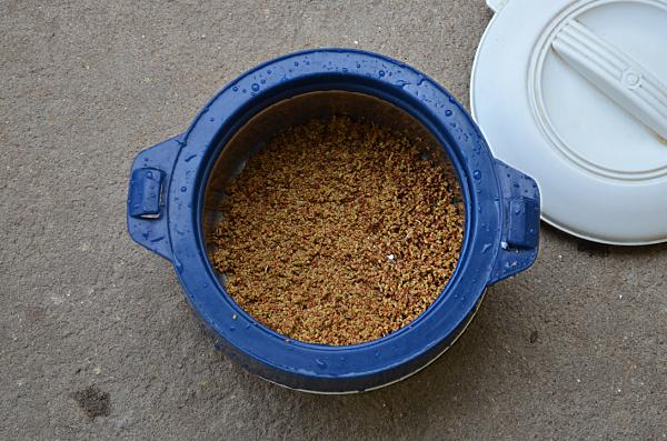 alfalfa plant benefits