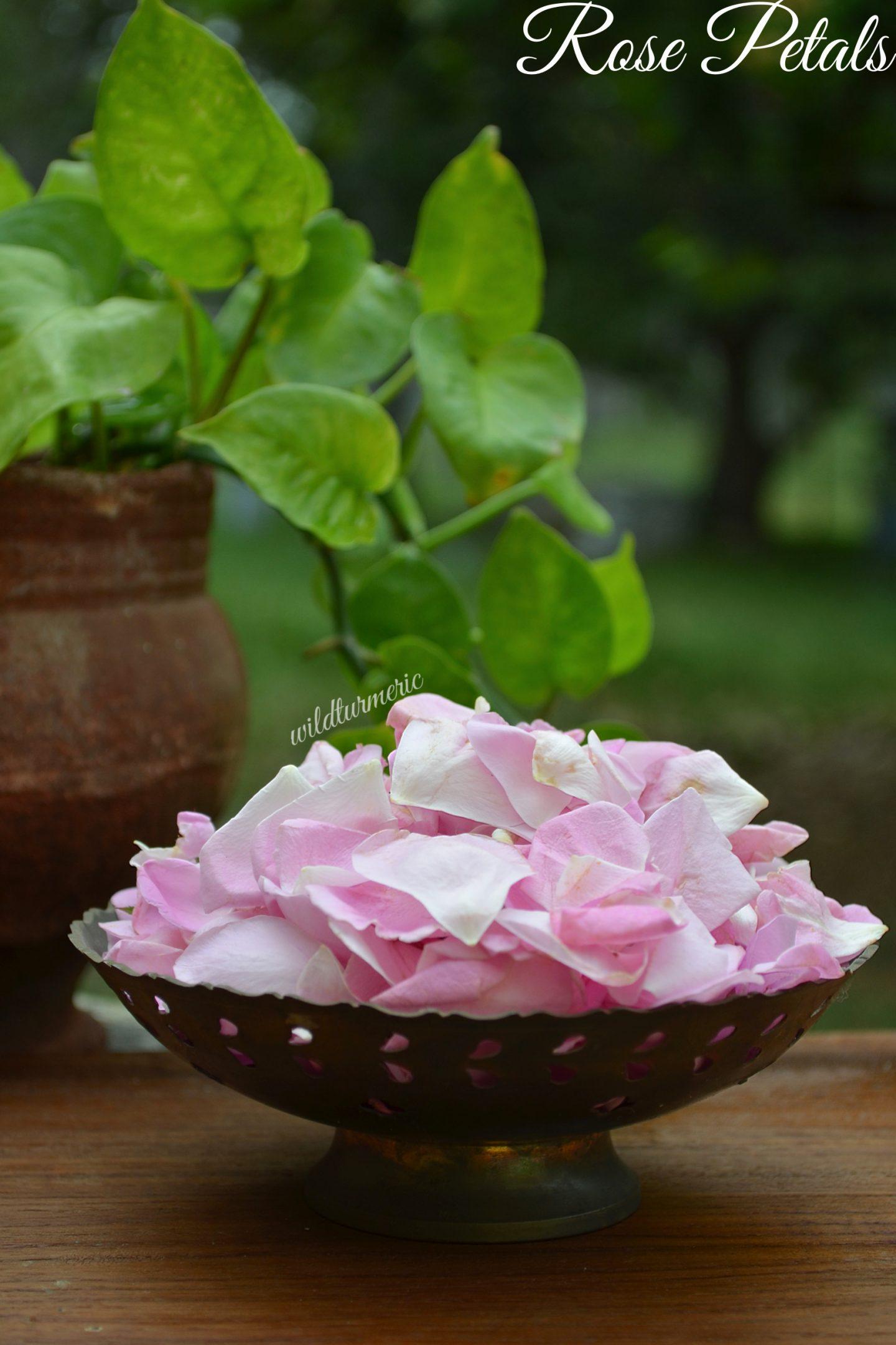 rose water hair benefits