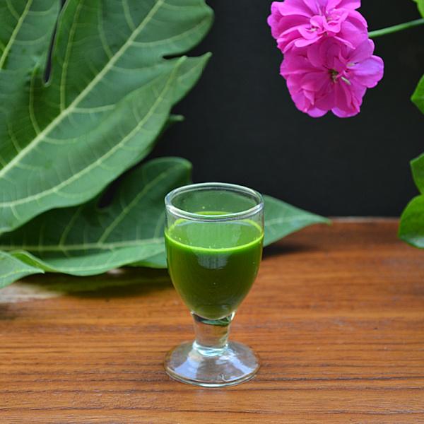 papaya leaf juice for platelets