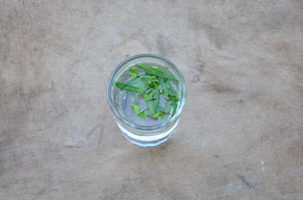 rue herb medicinal uses