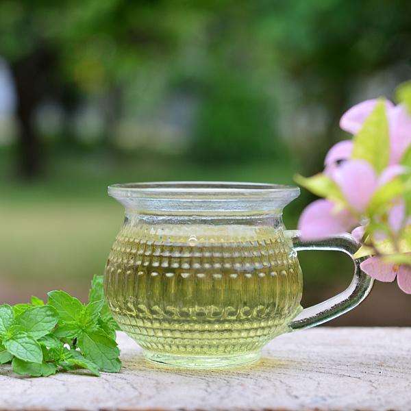 Pudina (mint) tea health benefits