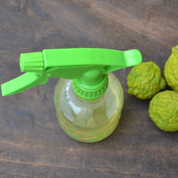 kaffir lime fruit health benefits
