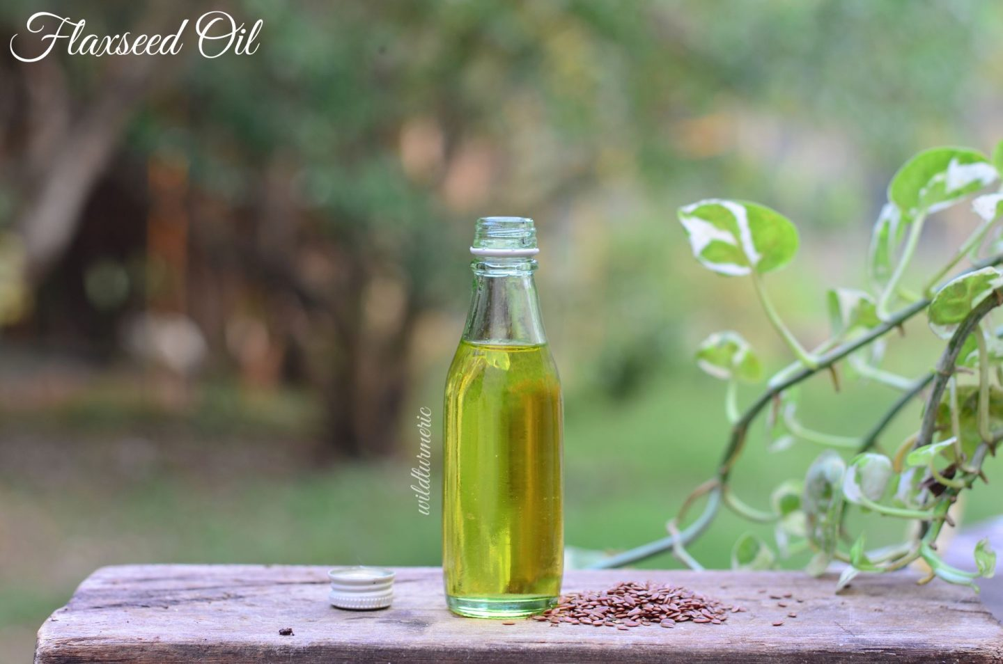 flax seed oil medicinal uses