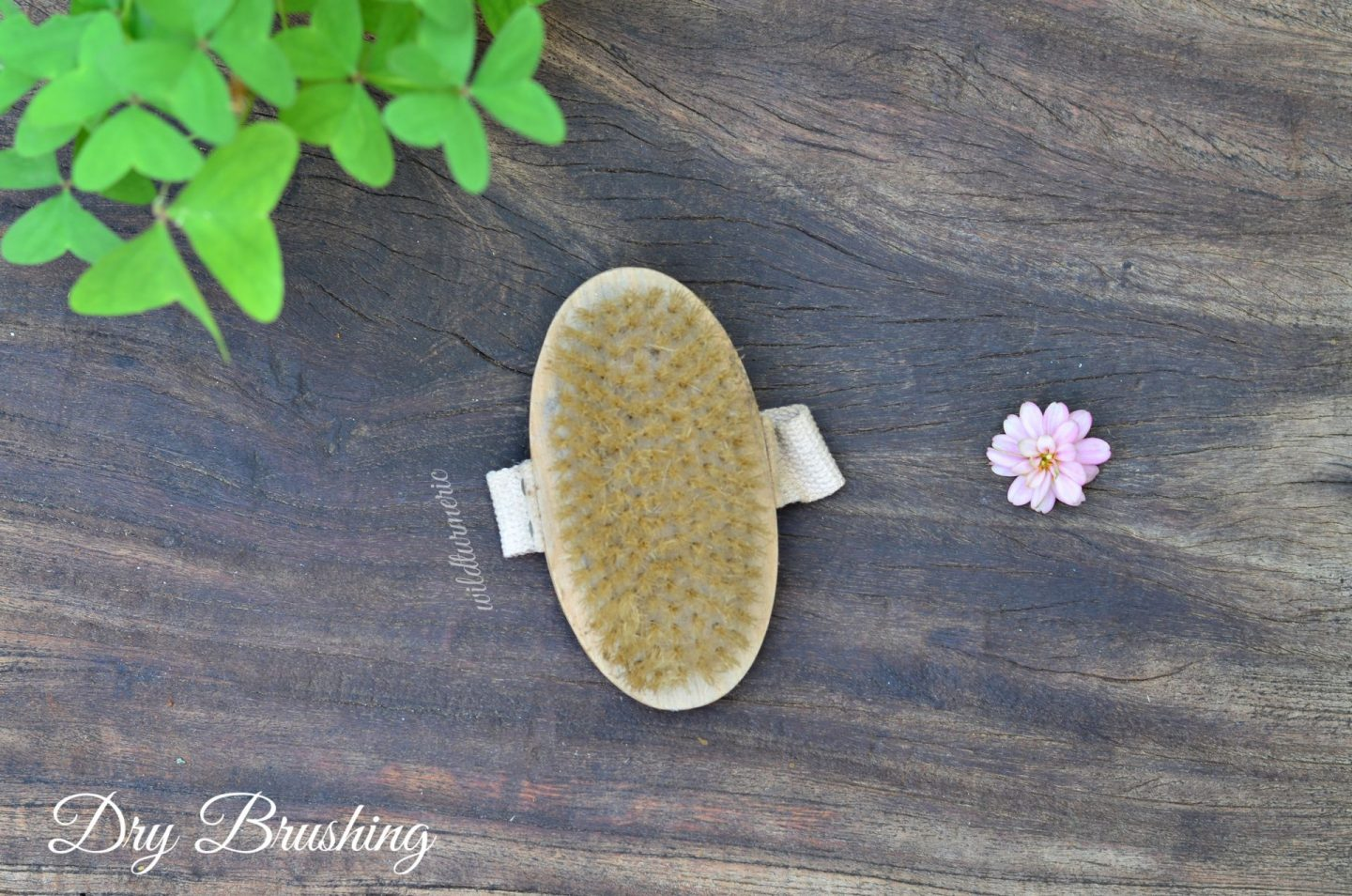 dry brushing skin benefits