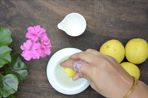 Aloe Vera and Lemon Hair Pack