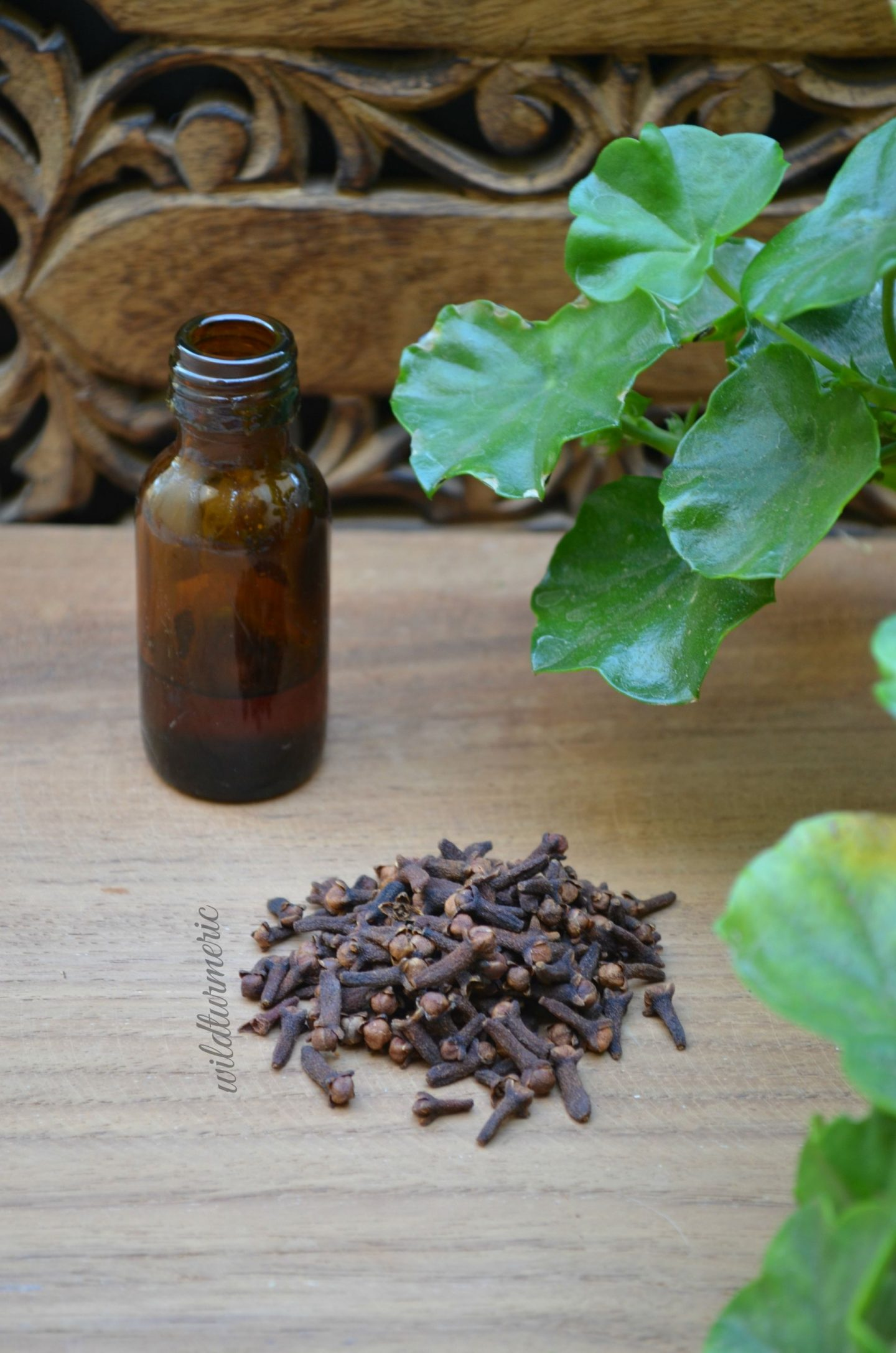 clove oil for tooth infection