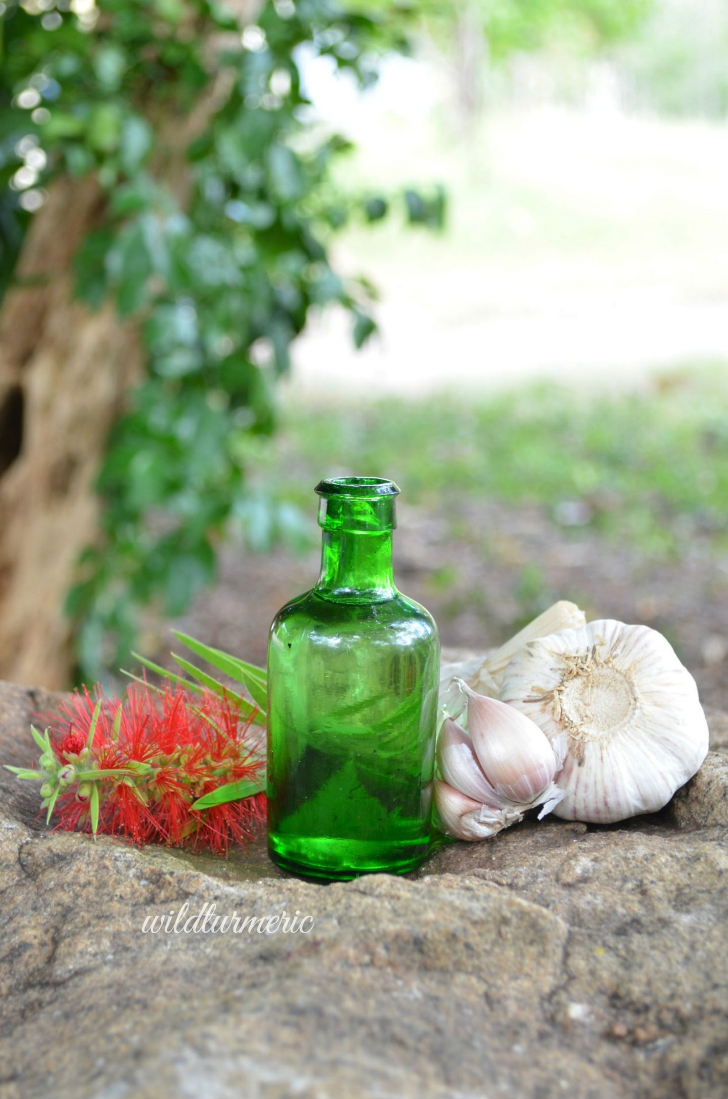 garlic essential oil health benefits