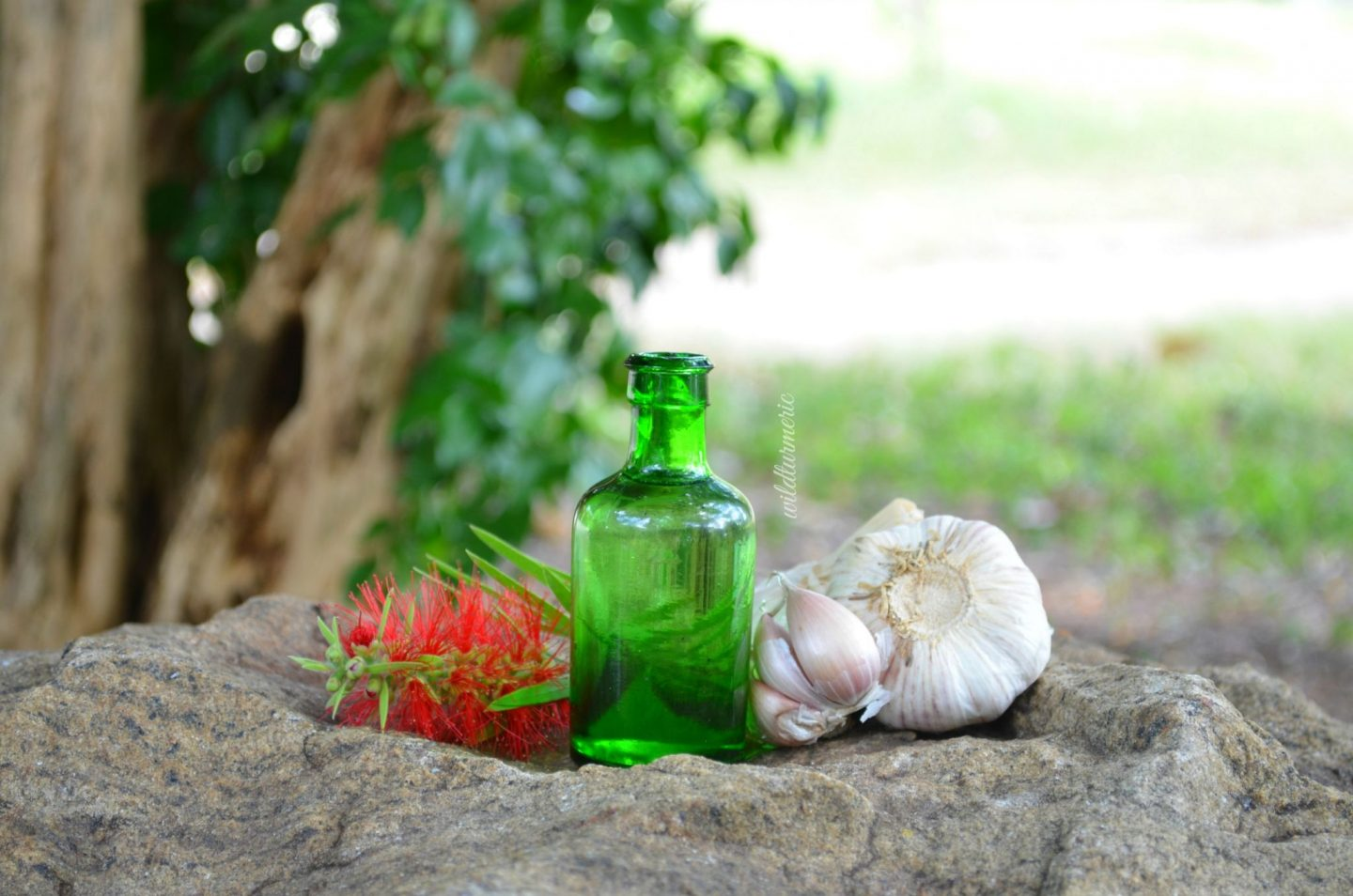 garlic oil for joint pain