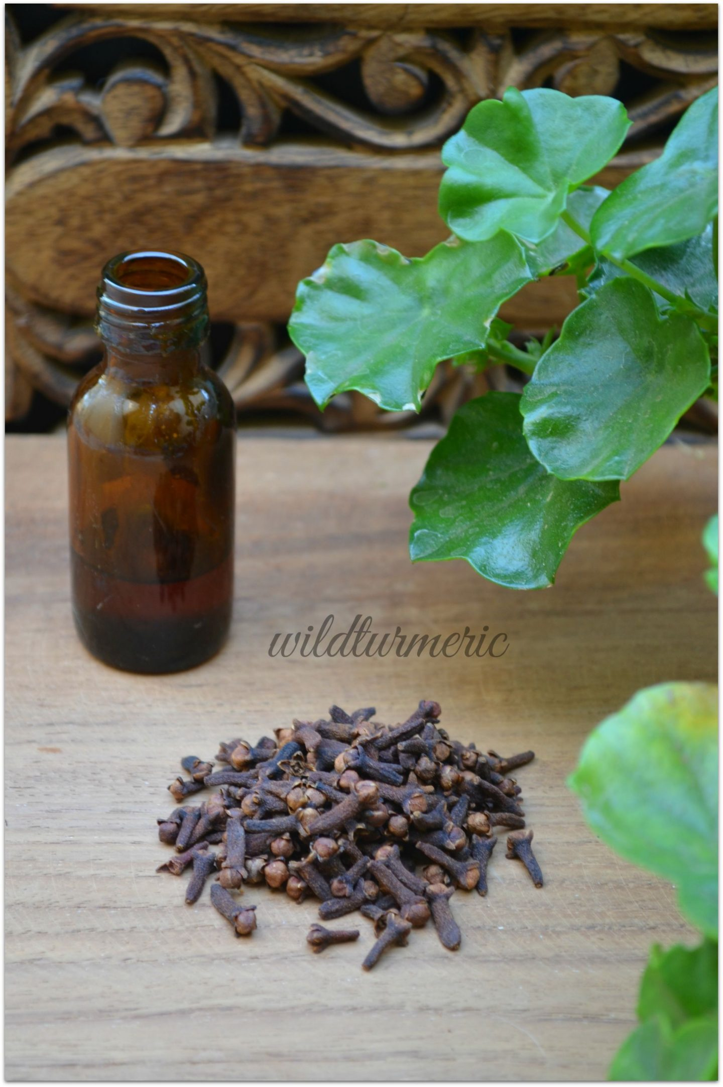 Cloves medicinal uses