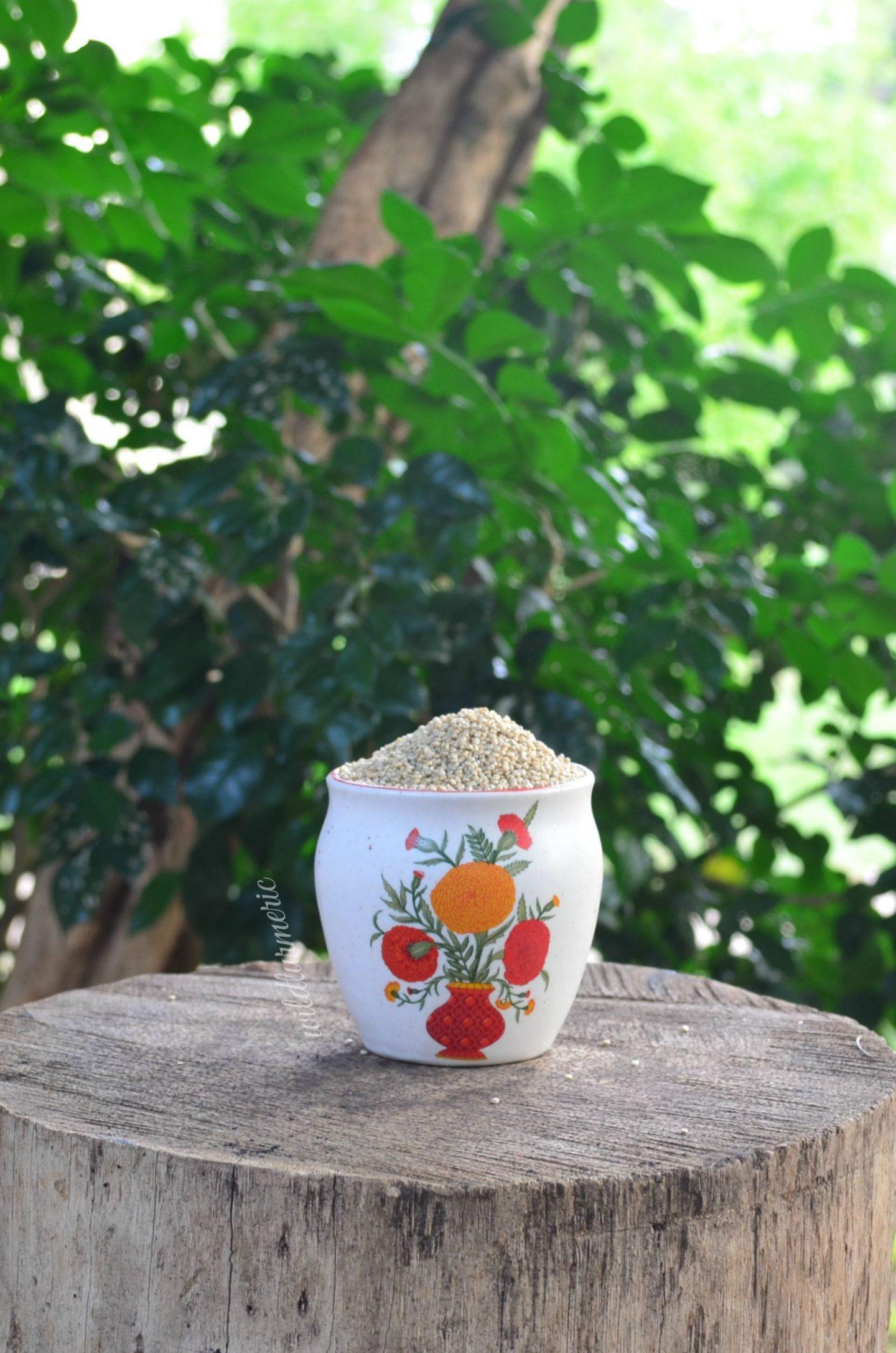 quinoa medicinal uses