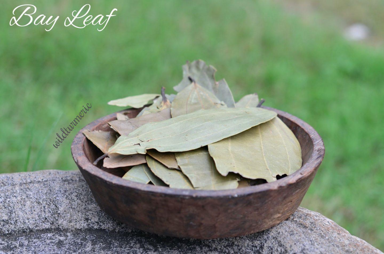 Tej Patta Medicinal Uses